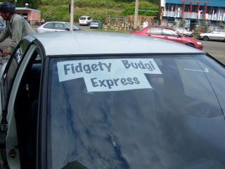 Fidgetybudgieexpress